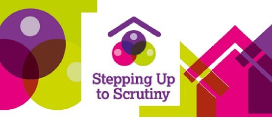 Stepping up to scrutiny