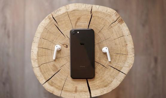 Phone on tree